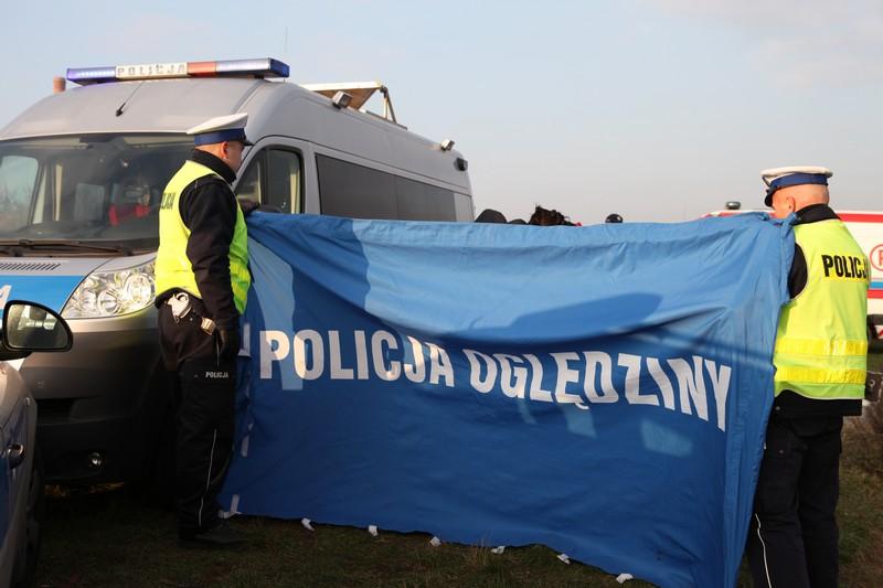 policja oględziny poszukiwania - Policja Poznań