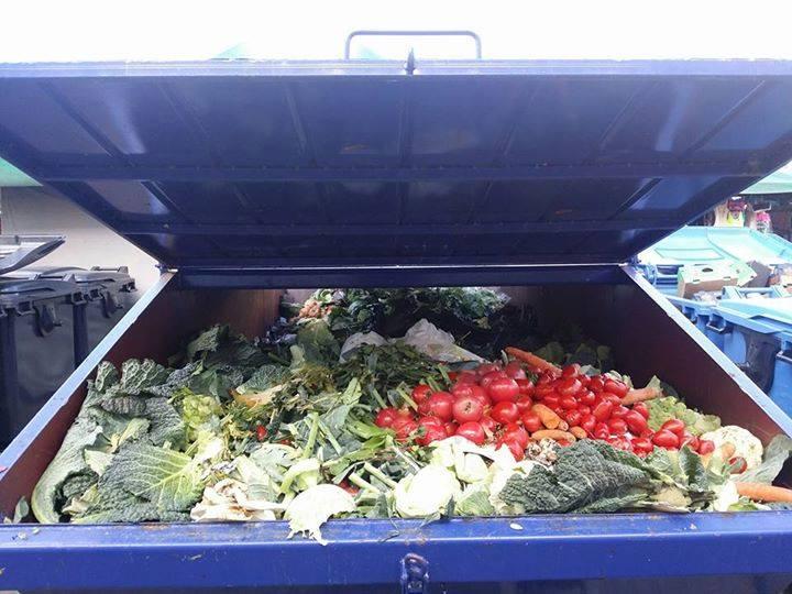 śmietnik pełen jedzenia - Adam Stepnowski-Said
