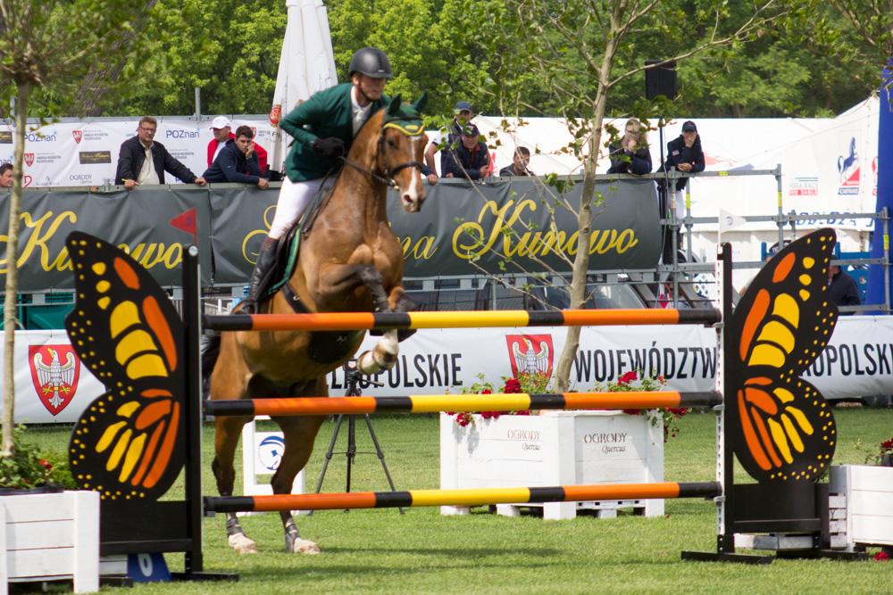 zawody jeździeckie na Woli 2017 (9) - Tomasz Żmudziński