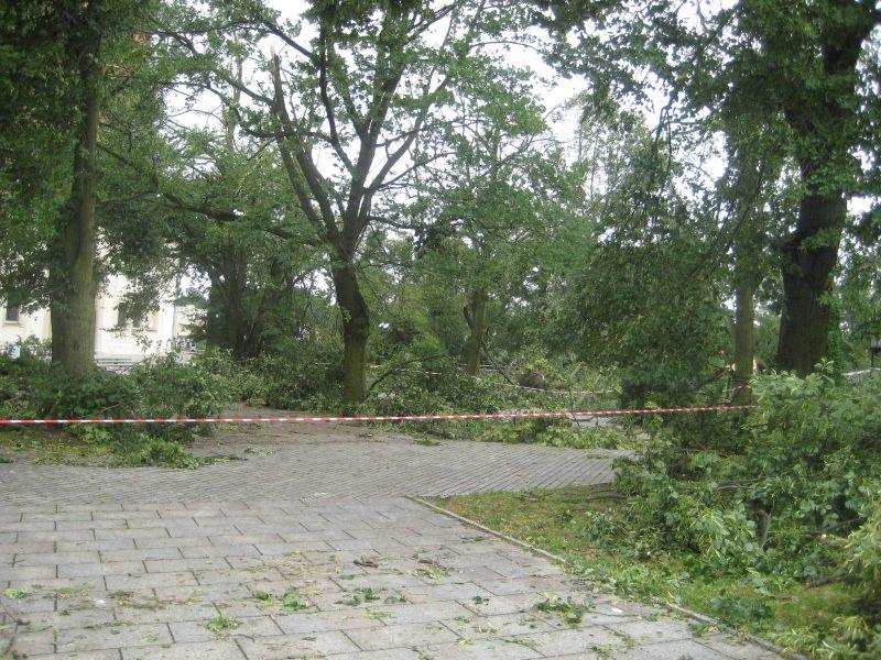 gniezno po burzy - Rafał Muniak
