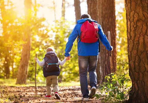 ojciec i syn wyprawa las rodzina spacer wędrówka - Fotolia