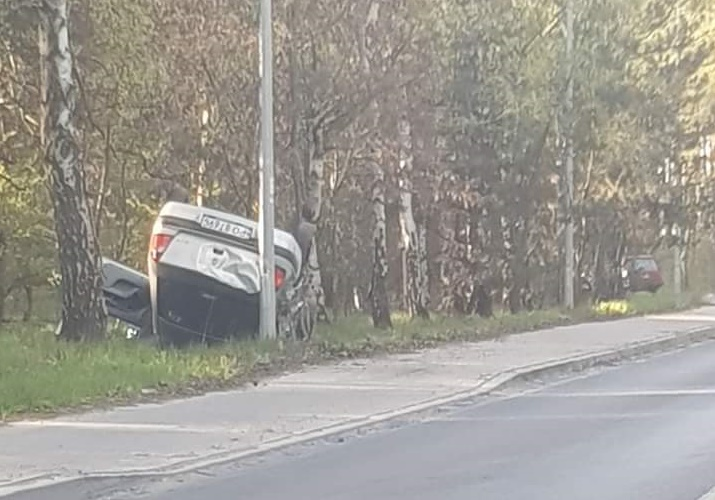 Skórzewo dachowanie - Paulina - Alert Poznań /Facebook/