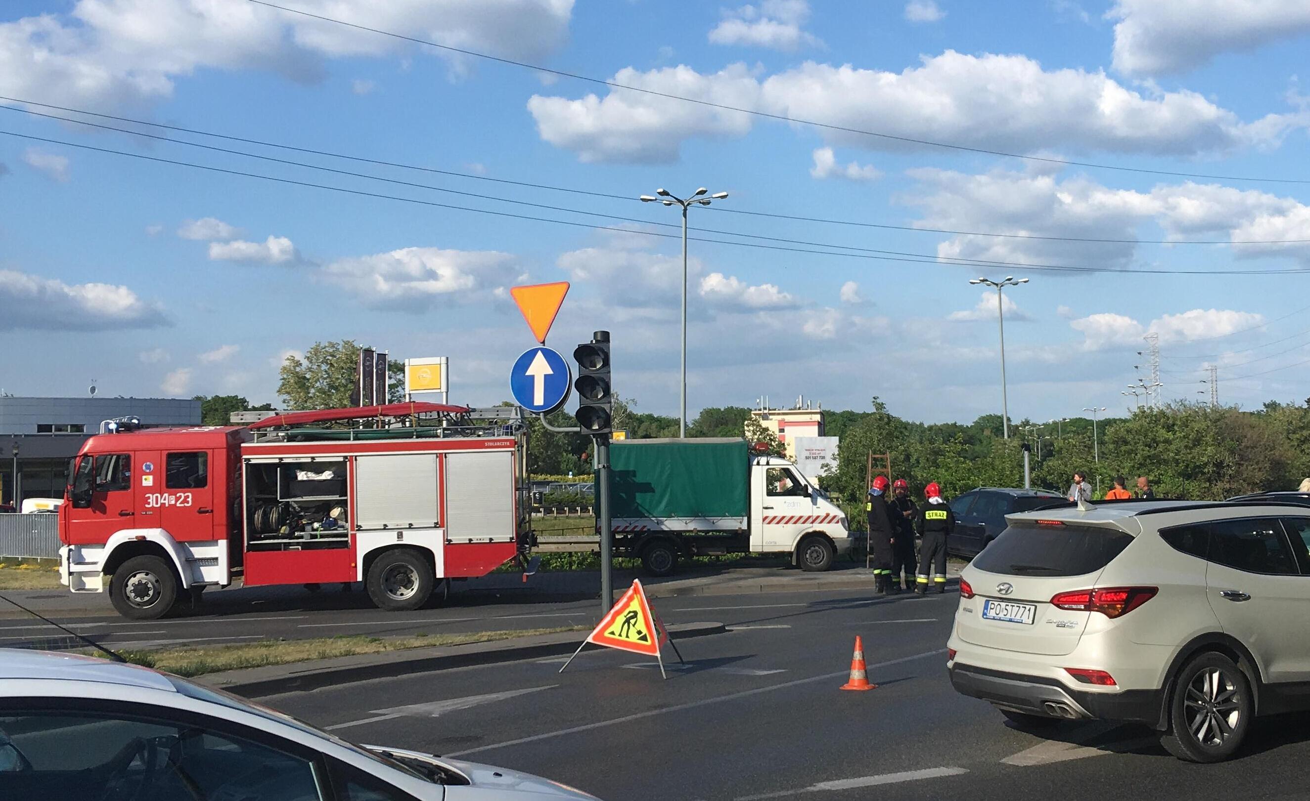 wypadek dąbrowskiego polska - Adam Michalkiewicz