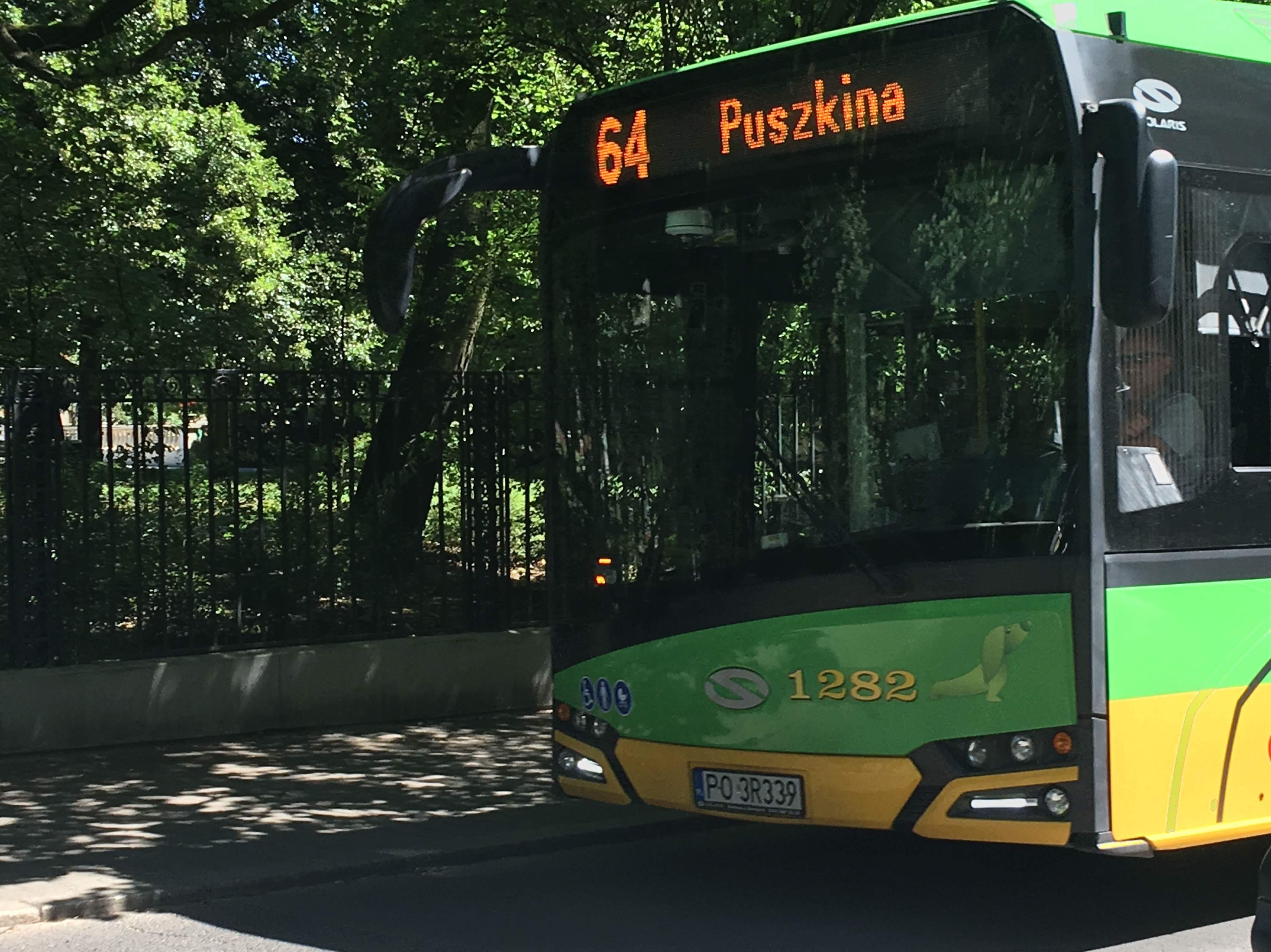 Autobus - Adam Michalkiewicz