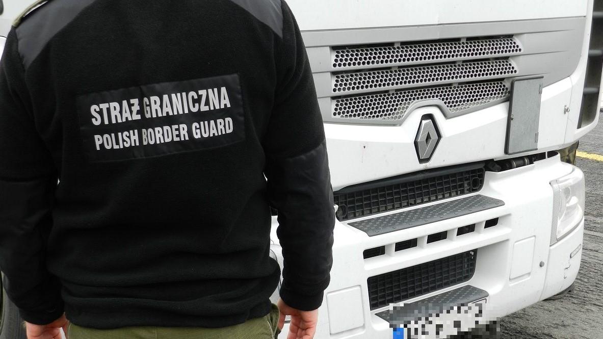 Straż Graniczna nielegalni imigranci - Straż Graniczna