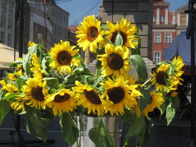 Ukraińska Wiosna - jarmark na Starym Rynku - Aleksandra Włodarczyk