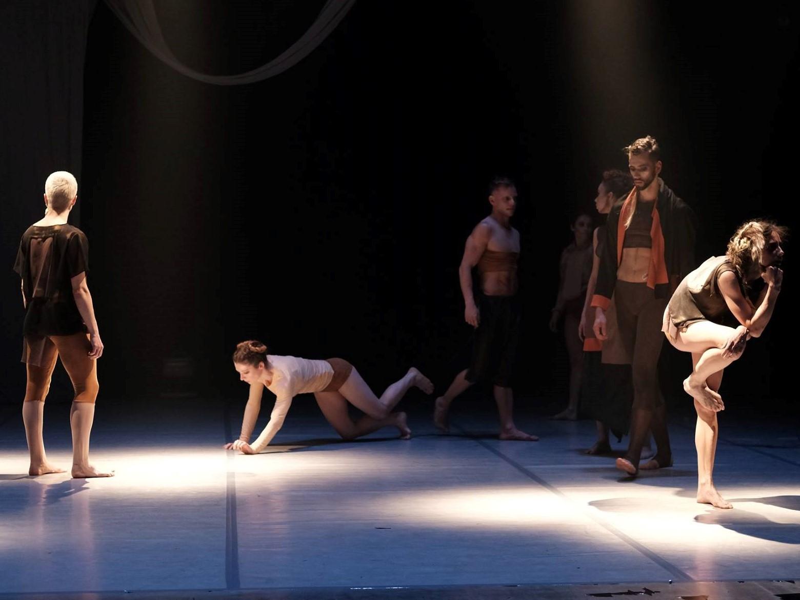 Polski Teatr Tańca  - Polski Teatr Tańca Facebook