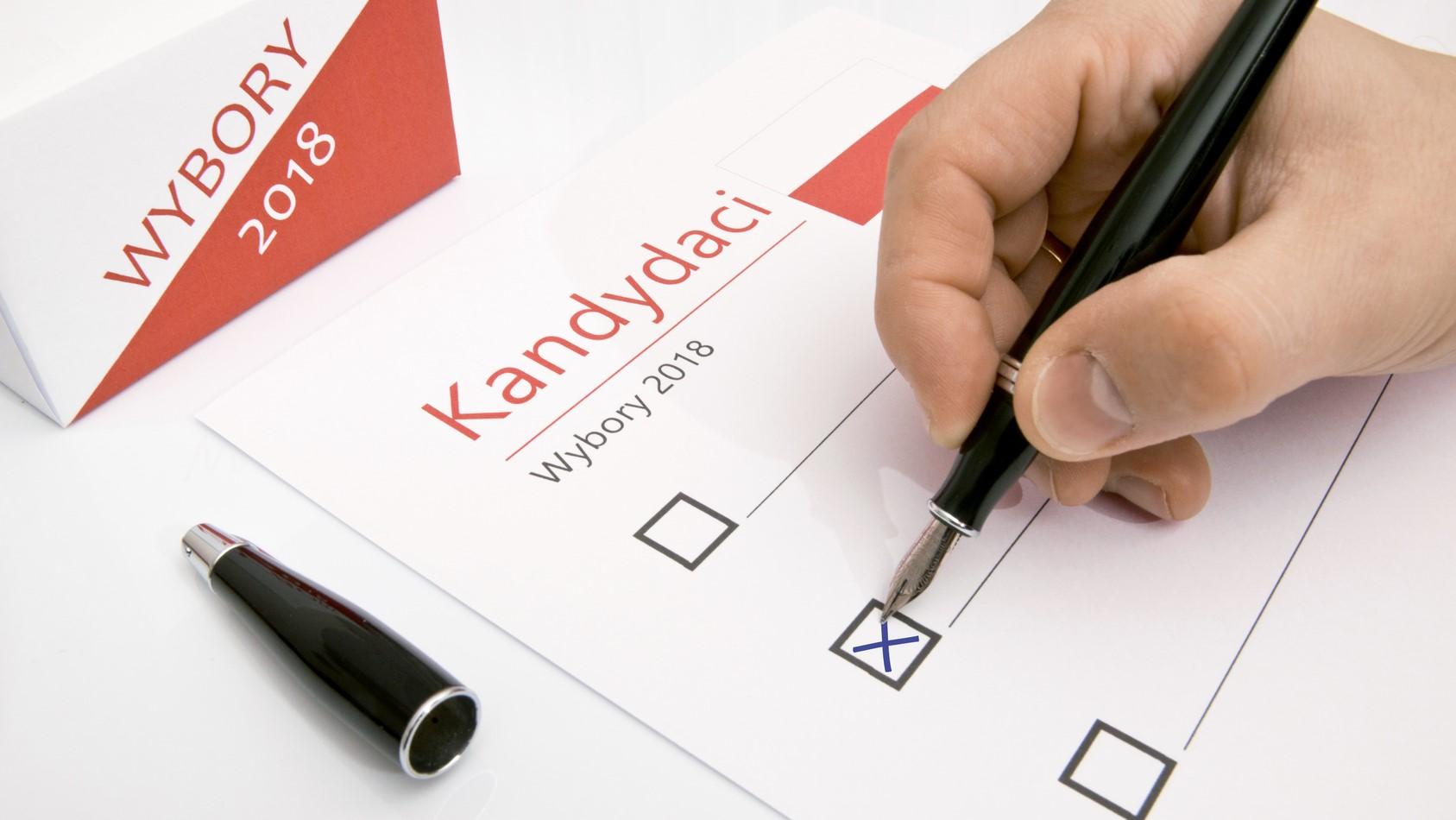 głosowanie wybory długopis - fotolia