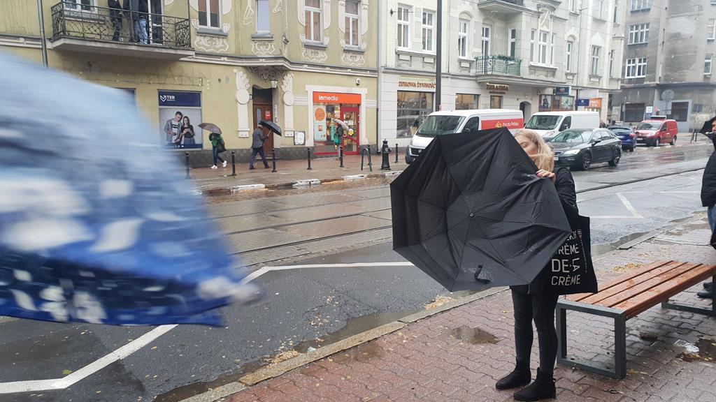 wiatr i deszcz parasole - Michał Jędrkowiak