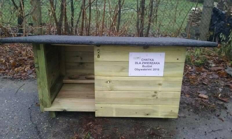 chatki dla kotów złotów zwierzęta  - zlotow.pl