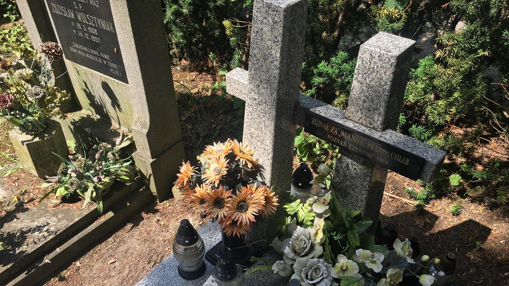 cmentarz Bluszczowa ofiary Czerwca56 - Adam Michalkiewicz