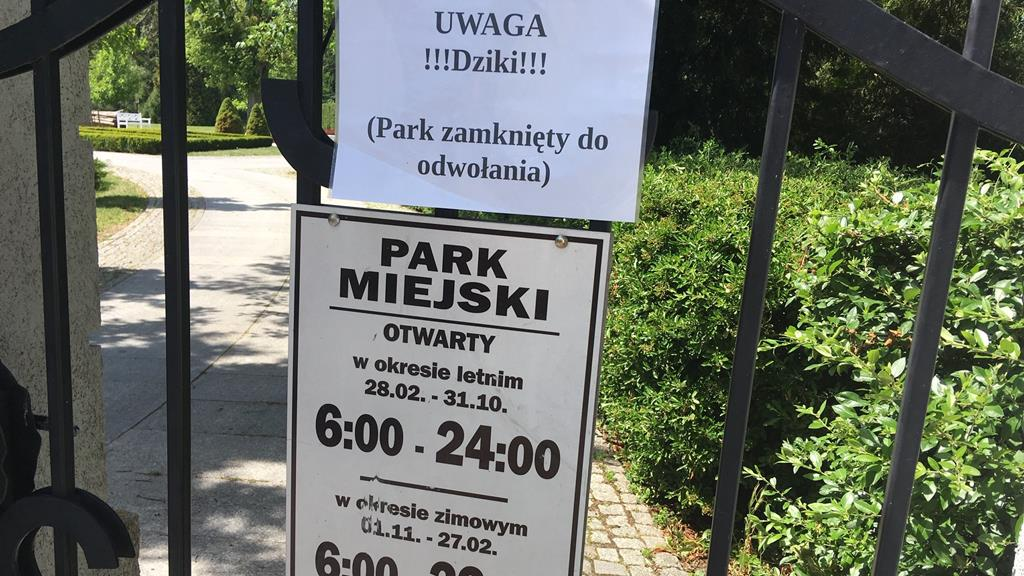 dziki park piła zamknięty