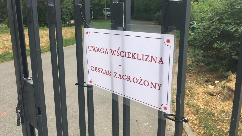 wścieklizna obszar zagrożony park willsona - Adam Michalkiewicz
