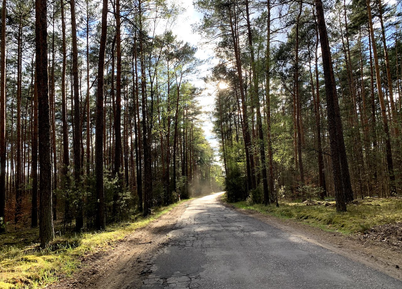 las droga wiosna - Kacper Witt - Radio Poznań