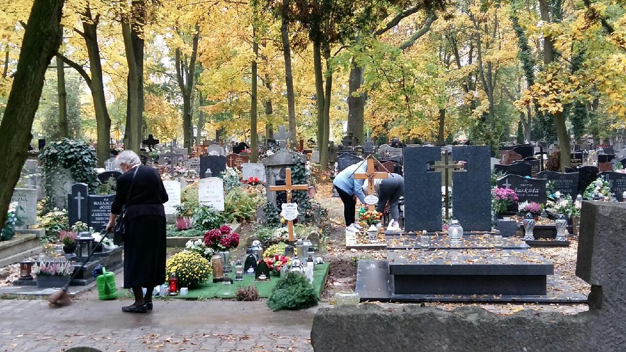 cmentarze wszystkich świętych - Magdalena Konieczna