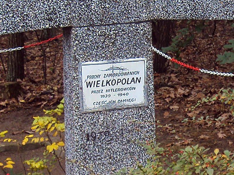 Groby Zakrzewskie, Od 11.1939r. do 1945r. na leśnym obszarze koło miejscowości Zakrzewo odbywały się masowe egzekucje polskich obywateli/fot. uczniowie SP im.A.Lindgren w Dąbrowie