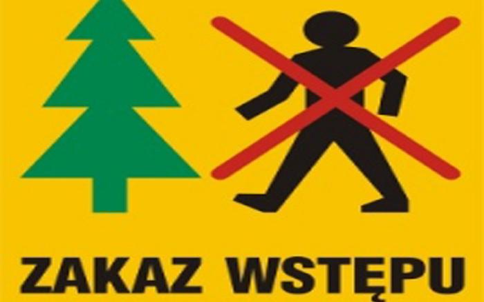 Zakaz wstępu do lasu - poziom - Lasy Państwowe
