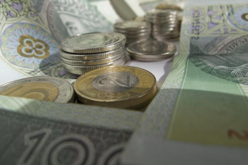 pieniądze banknoty monety 2 - TomFoto