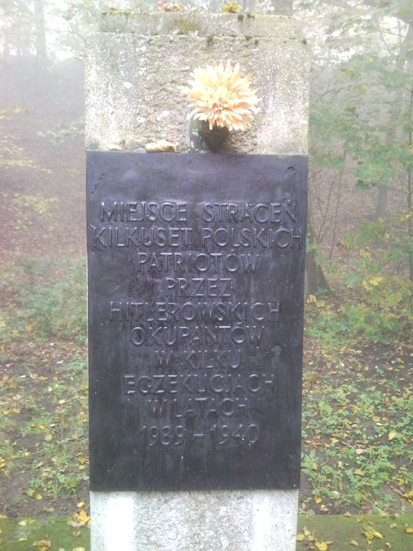 Zapal Znicz Pamięci - Dębina Poznań