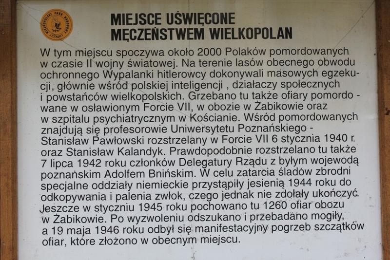 Dębienko k. Strzeszyna