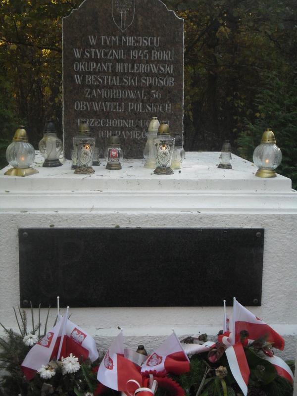 Lasy Skarszewskie k. Kalisza