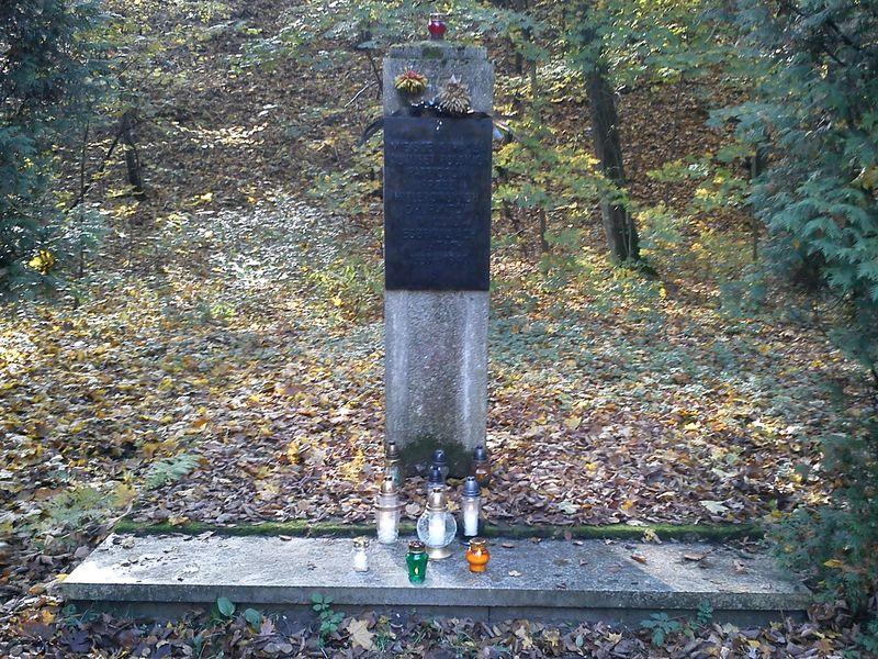 Znicze w lasku na Dębinie w Poznaniu