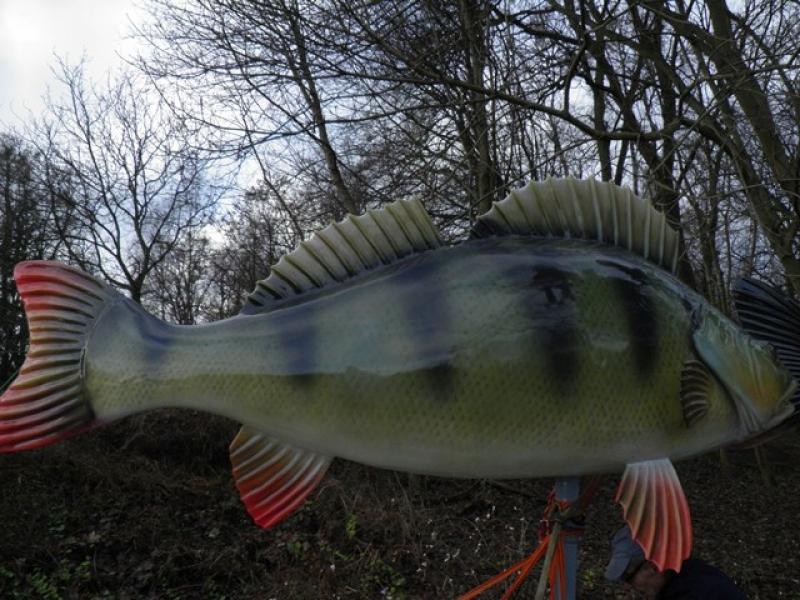 wielka ryba z trzcianki 6 - Nadnotecka Grupa Rybacka