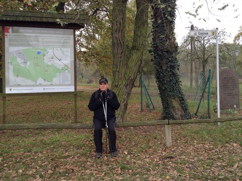 Znicze w Lasach Palędzko-Zakrzewskich