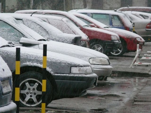 Śnieg w Pile - pierwsze opady - Wiesława Pinkowska