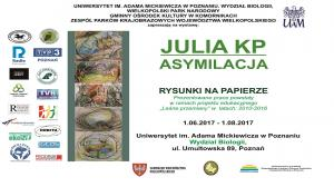 """1 CZERWCA - 1 SIERPNIA, WYSTAWA PRAC JULII KP """"ASYMILACJA"""""""