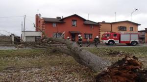Wsparcie finansowe z ministerstwa dla poszkodowanych przez orkan