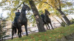 Policja konna w Radiu Poznań