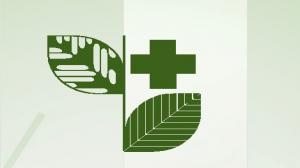 9-10 lutego,  Poznań,  57. Sesja Naukowa Instytutu Ochrony Roślin – PIB