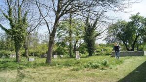 Sprzątają cmentarz żydowski