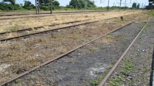 Z Wolsztyna do Nowej Soli - pociągiem!