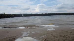 Problem z przejrzystością Jeziora Strzeszyńskiego. Czy można to zmienić?