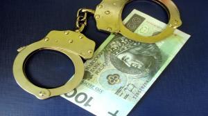 Ponad 130 zarzutów dla oszusta