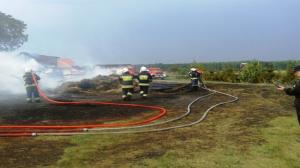 Tragedia przy wypalaniu trawy