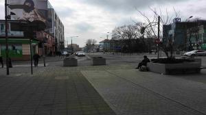Donice pojawią się również na Placu A. Mickiewicza
