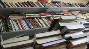 Kilka tysięcy książek dla skandynawskiej Polonii