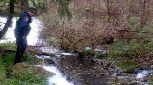 Rzeka Głuszynka skażona?