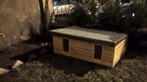 Domki dla bezpańskich kotów