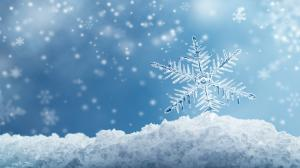 Jak śnieg sprawił, że życie w Południowej Karolinie zamarło