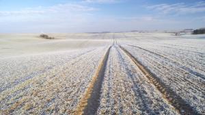 Wielkopolscy rolnicy drżą o jesienne zasiewy