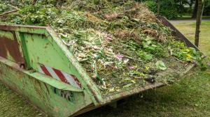 Segregacja odpadów zielonych. Czy to konieczne?