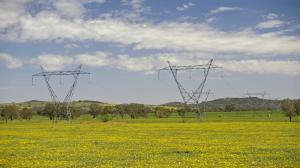 Zielone światło dla linii energetycznej