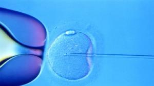 Radni chcą dofinansowywać in-vitro