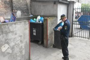 Trwa deratyzacja w Poznaniu. Szczury mogą wejść do łazienki