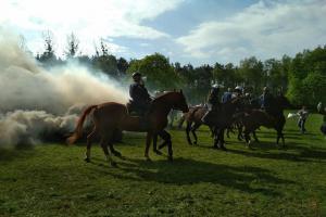 Międzynarodowe warsztaty dla policji konnej