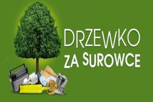 Sadzonki za śmieci w Leszczyńskiem